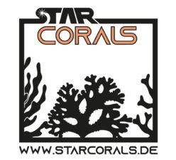 StarCorals